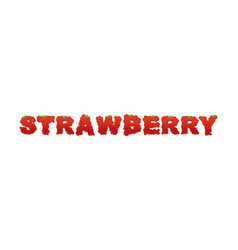 Strawberry typography letters of ripe red berries vector