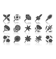 wild flowers drop shadow black glyph icons set vector image
