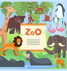 zoo animals poster template vector image