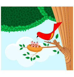 bird feeding her children vector image