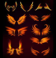 Bird fire wings fantasy feather burning fly mystic vector