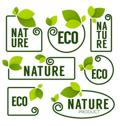 Eco and nature green fresh leaves emblems vector