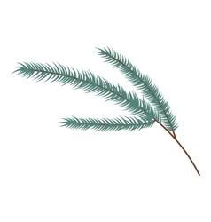 Fir branch icon cartoon style vector image
