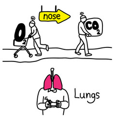 Metaphor function lungs to exchange carbon vector