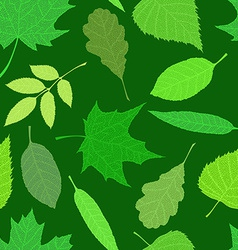 Spring texture vector