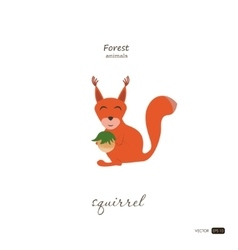 Squirrel in cartoon style on white background vector image