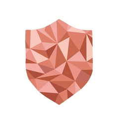 Polygonal guard Icon with geometrical figures vector image vector image