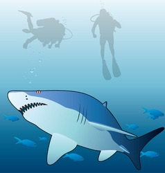 shark and scuba divers vector image vector image