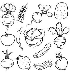 Doodle of vegetables set hand draw vector