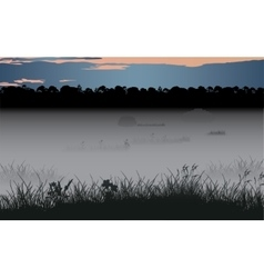 Foggy swamp and wild coniferous forest vector