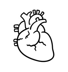 Human Heart Transparent Vector Images (over 140)