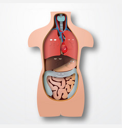 Human body anatomy medical organs emotions system vector