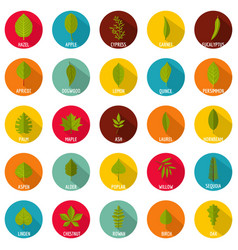Leaf icons set flat style vector