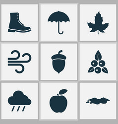 Season icons set with rain fruit puddle and vector