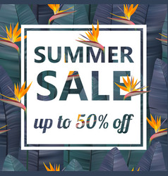 tropical sale design with bright exotic vector image