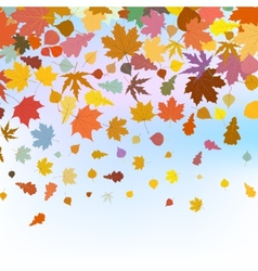 Beautiful autum leaves against sky EPS 8 vector