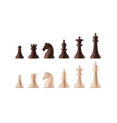 collection black and white chess pieces vector image