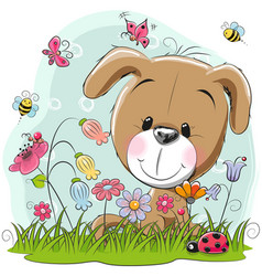 cute cartoon puppy on a meadow vector image
