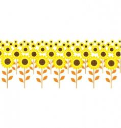 Field sunflowers vector