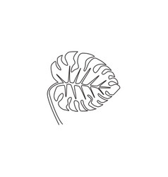 one single line drawing cute beauty tropical leaf vector image
