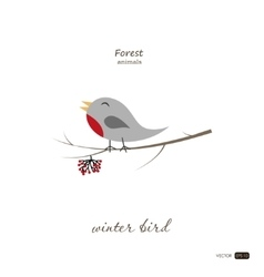 Winter bird in cartoon style on white background vector image