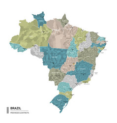 brazil higt detailed map with subdivisions vector image
