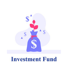 money bag capital growth earn more money vector image
