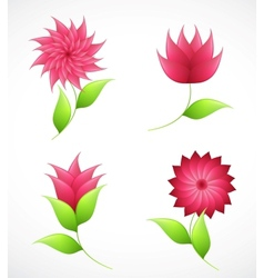 Nature flowers for design vector image