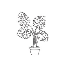 one single line drawing cute potted tropical vector image