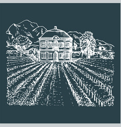 vineyard hand sketch of vector image