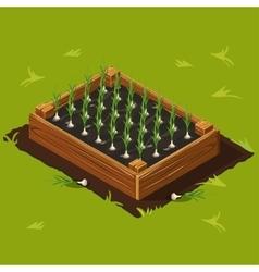 Vegetable Garden Box with Garlic Set 10 vector image vector image