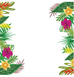 floral and leaves of summer with copy space vector image vector image