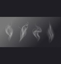 fluid cigarette smoke on a dark background vector image