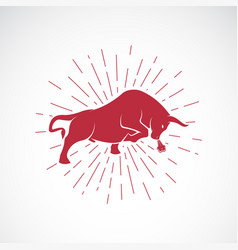 Angry bull on white background animal bull vector