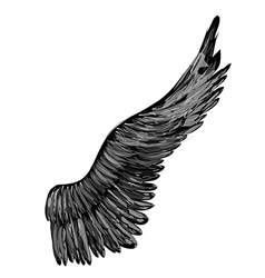 Black abstract wing vector