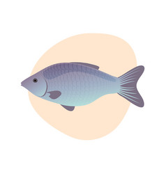 Cartoon fish isolated vector