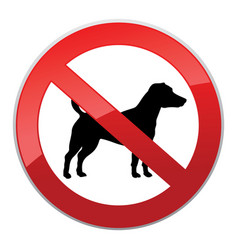 no dog walk sign dog walking fobidden symbol vector image