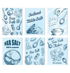 sea salt posters and banners vintage labels vector image
