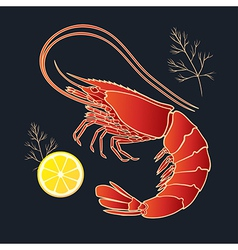 Shrimp with lemon and dill vector image