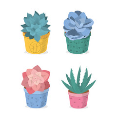 succulent on pot cartoons icons vector image