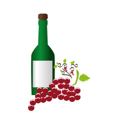 wine bottle with cork and bunch of grapes vector image
