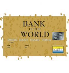 dollar credit card vector image vector image