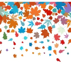 Autumn leafs abstract background eps 8 vector