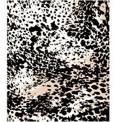 Fashion leopard pattern vector