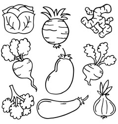 Hand draw of vegetable object doodles vector