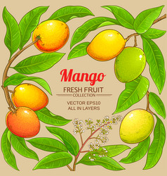Mango branches frame on color background vector