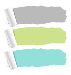 pastel color torn paper set vector image
