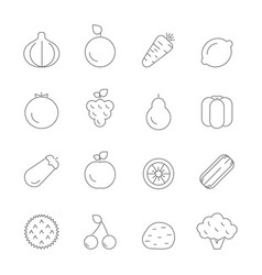 various icons of fruits and vegetables vector image