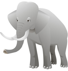 isolated elephant on white background vector image vector image
