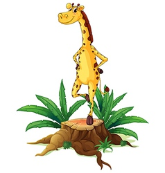 A giraffe standing above a chopped wood vector image